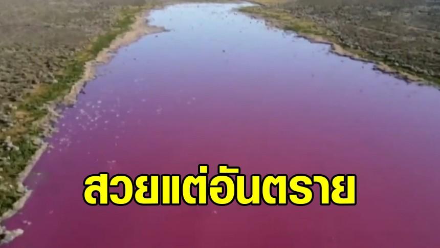 สวยแต่อันตราย! ทะเลสาบสีชมพูในอาร์เจนตินา ชี้เป็นสารเคมีจากโรงงาน