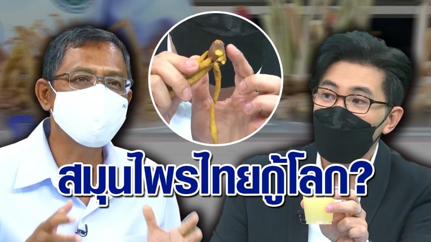 แพทย์แผนไทยเผย สมุนไพรกระตุ้นภูมิไม่ได้มีแค่ 'กระชายขาว' ยังมีอีกสารพัดชนิดที่ช่วยได้