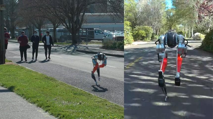 หุ่นยนต์ครึ่งตัวมีแต่ขา โชว์ลีลาการวิ่ง ทำสถิติใหม่วิ่ง 5 กิโลเมตร