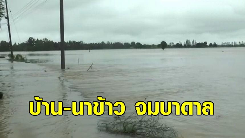 อุทัยธานีอ่วม หลายหมู่บ้านใน 2 อำเภอ น้ำท่วมสูง นาข้าว-บ้านเรือน จมใต้บาดาล