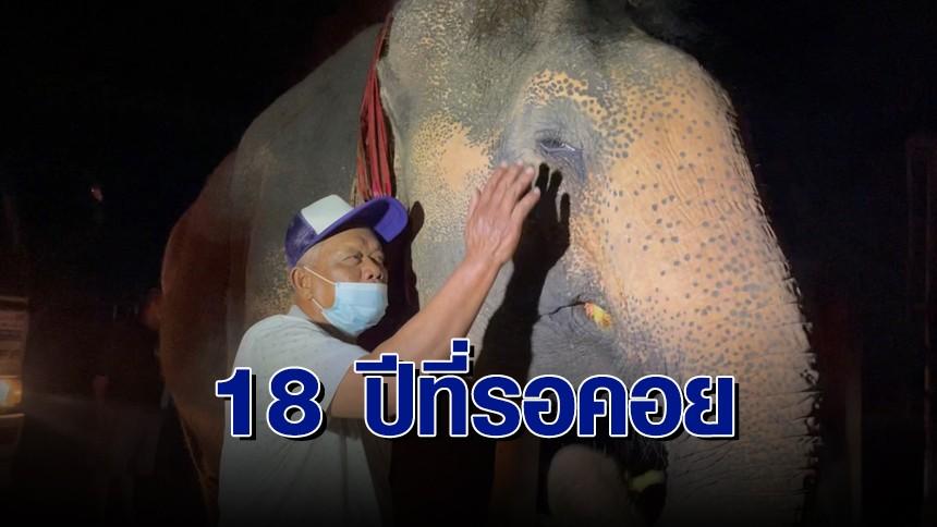 น้ำตาไหลทั้งคนทั้งช้าง 'พังโย' กลับสู่อ้อมอกเจ้าของในรอบ 18 ปี หลังถูกขโมยไปขาย สู้จนชนะคดี