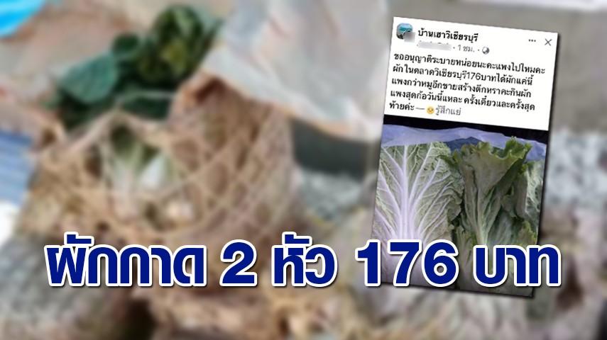 ชาวบ้านบ่นอุบ เกิดมาไม่เคยเจอ ซื้อผักกาด 2 หัว 176 บาท ซัด ขายแพงกว่าหมู