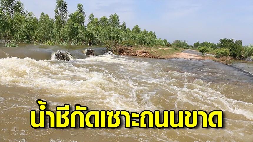 น้ำชีกัดเซาะถนนขาด ชาวบ้านเกือบ 700 หลังคาเรือนเดือดร้อนหนัก