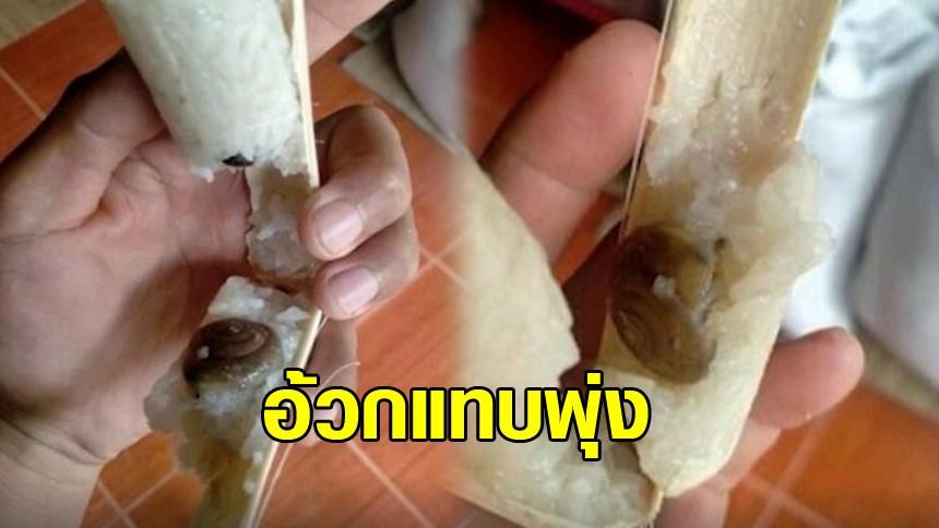 หนุ่มอ้วกแทบพุ่ง กินข้าวหลามเกือบหมด เจอหอยทากอยู่ก้นกระบอก