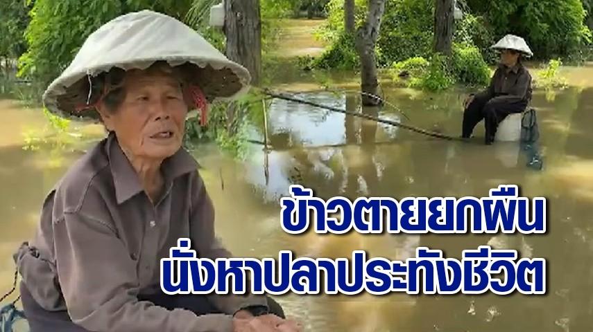 ยายวัย 80 ตัวคนเดียว กู้ 5 หมื่นทำนา เจอน้ำท่วมซ้ำหมดปัญญาคืนเงิน นั่งหาปลาประทังชีวิต