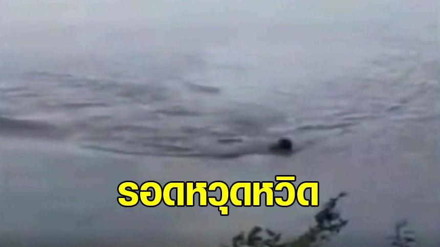 หนุ่มบราซิลว่ายน้ำหนีตาย ถูกจระเข้อัลลิเกเตอร์กัด รอดหวุดหวิด